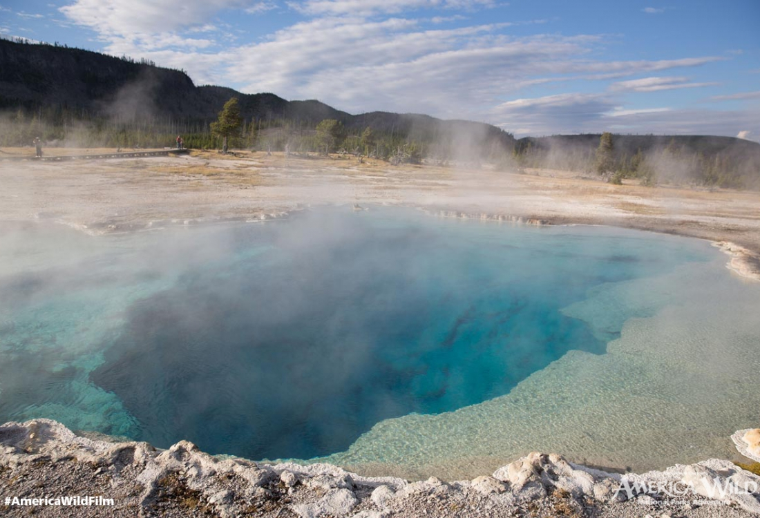 Blue Geyser in Yellowstone National Park