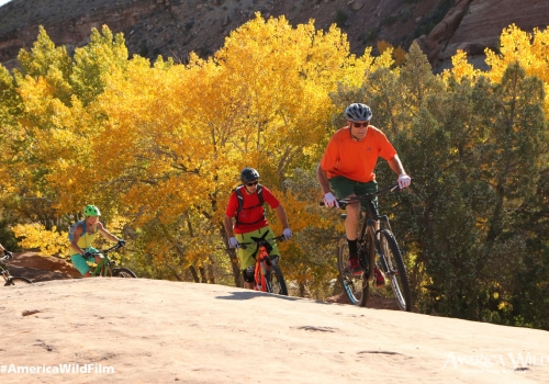 Mountain Biking in Utah